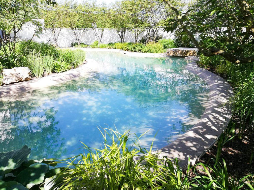 Paesaggi D Acqua Piscine perché scegliere una piscina biodesign   paesaggi d'acqua